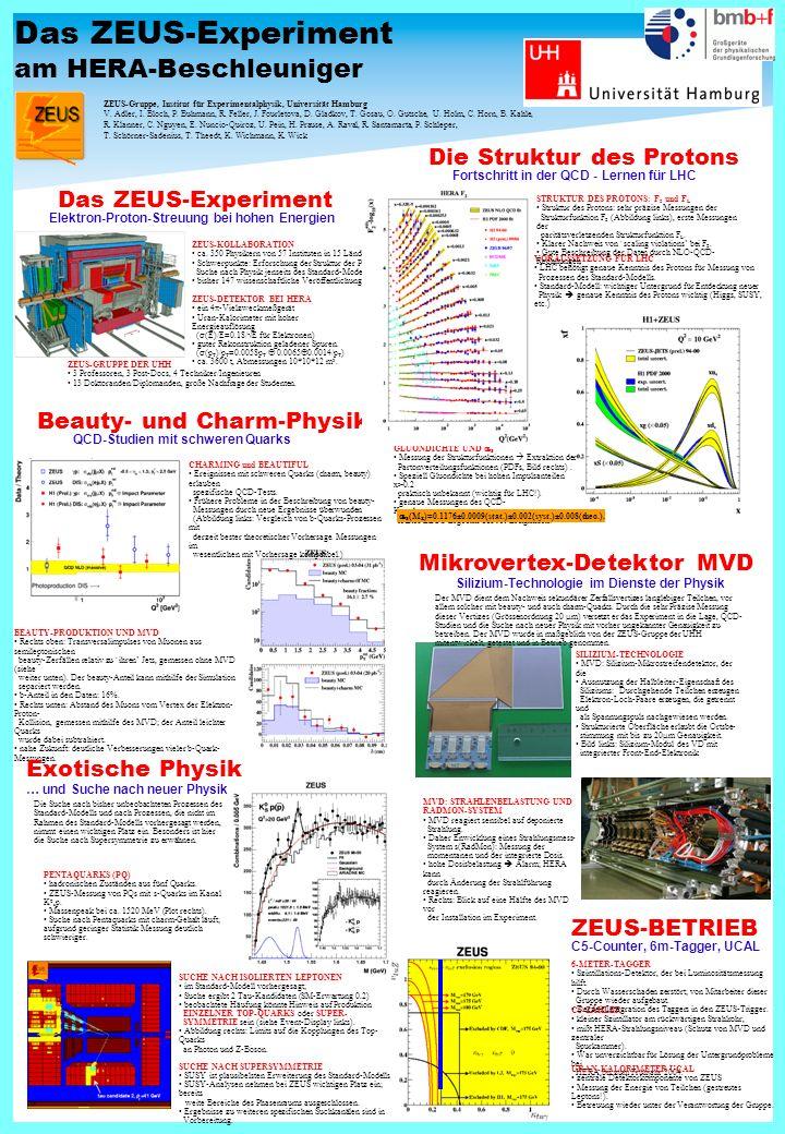 Das ZEUS-Experiment am HERA-Beschleuniger Das ZEUS-Experiment Elektron-Proton-Streuung bei hohen Energien ZEUS-KOLLABORATION ca.