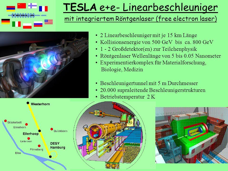 Teilchenphysik mit erdgebundenen und kosmischen Beschleunigern V03 TU SS2004 S. Bethke, J. Schieck 29 2 Linearbeschleuniger mit je 15 km Länge Kollisi