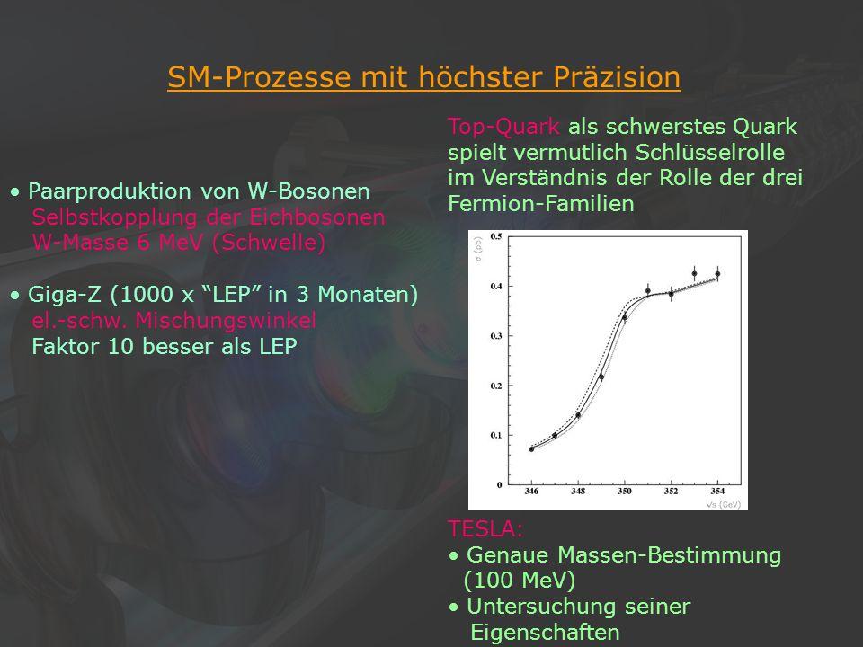 27Klaus Desch, Der Elektron-Positron-Linearcollider TESLA, 22/11/2002 SM-Prozesse mit höchster Präzision Top-Quark als schwerstes Quark spielt vermutl