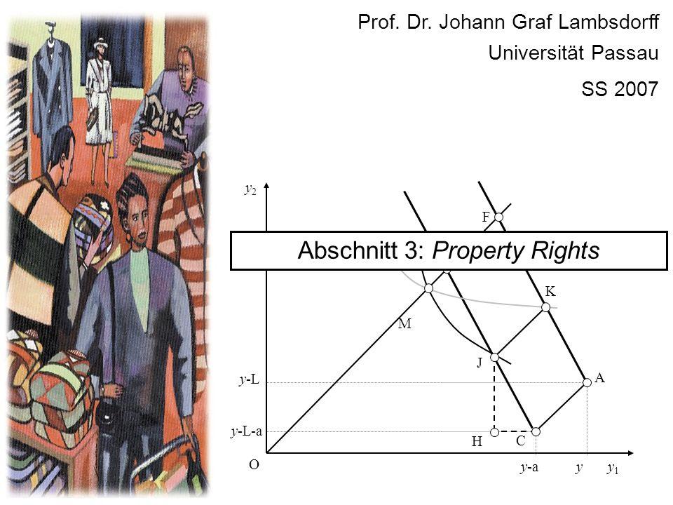 y2y2 y1y1 O E y C y-a y-L y-L-a A K F J M H Prof. Dr. Johann Graf Lambsdorff Universität Passau SS 2007 Abschnitt 3: Property Rights