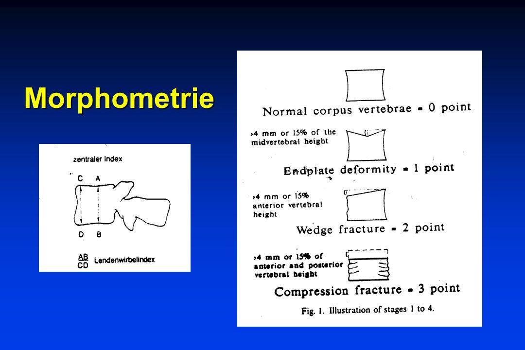 Morphometrie