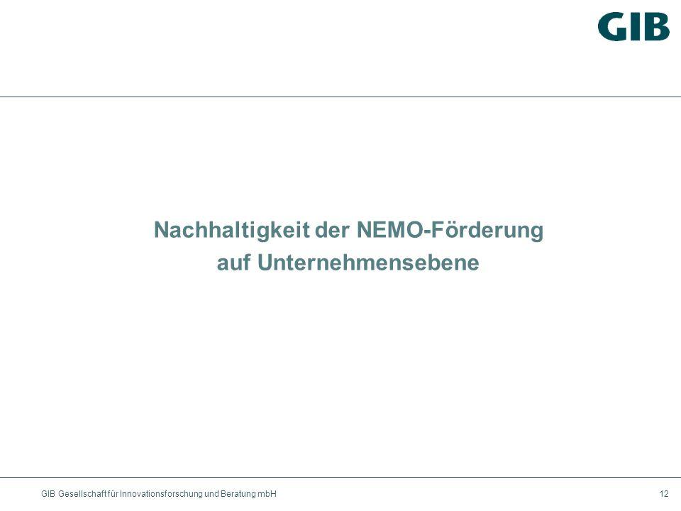 GIB Gesellschaft für Innovationsforschung und Beratung mbH12 Nachhaltigkeit der NEMO-Förderung auf Unternehmensebene