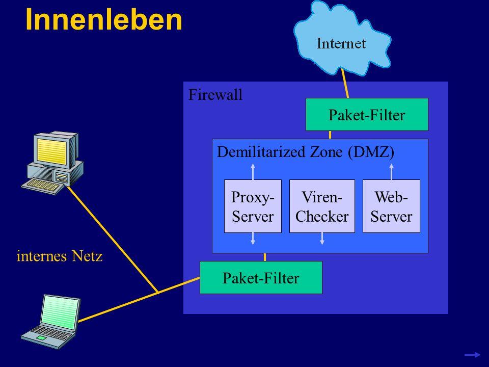 Innenleben Firewall Paket-Filter Demilitarized Zone (DMZ) Viren- Checker internes Netz Proxy- Server Web- Server
