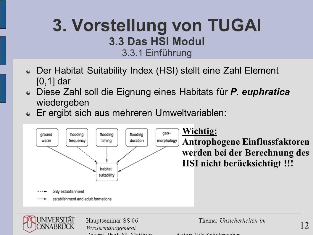 Hauptseminar SS 06Thema: Unsicherheiten im Wassermanagement Dozent: Prof. M. MatthiesAutor: Nils Schuhmacher 12 3. Vorstellung von TUGAI 3.3 Das HSI M