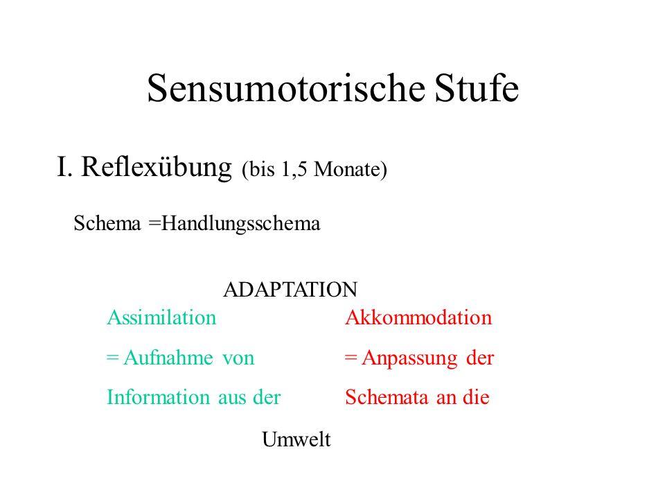 Sensumotorische Stufe I. Reflexübung (bis 1,5 Monate) Schema =Handlungsschema Assimilation = Aufnahme von Information aus der Akkommodation = Anpassun