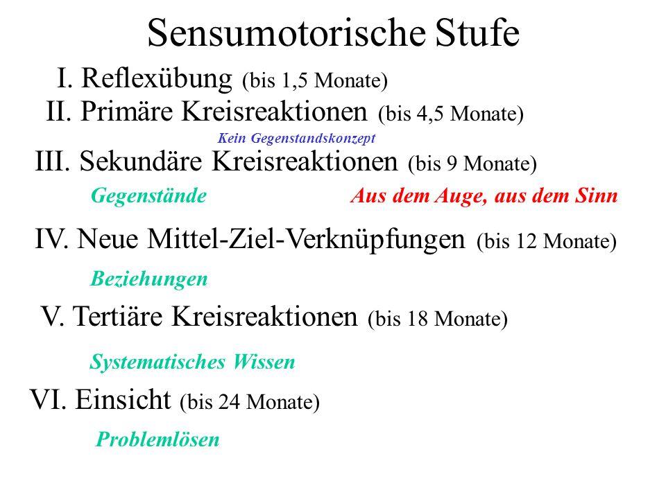 Sensumotorische Stufe I. Reflexübung (bis 1,5 Monate) II. Primäre Kreisreaktionen (bis 4,5 Monate) III. Sekundäre Kreisreaktionen (bis 9 Monate) IV. N