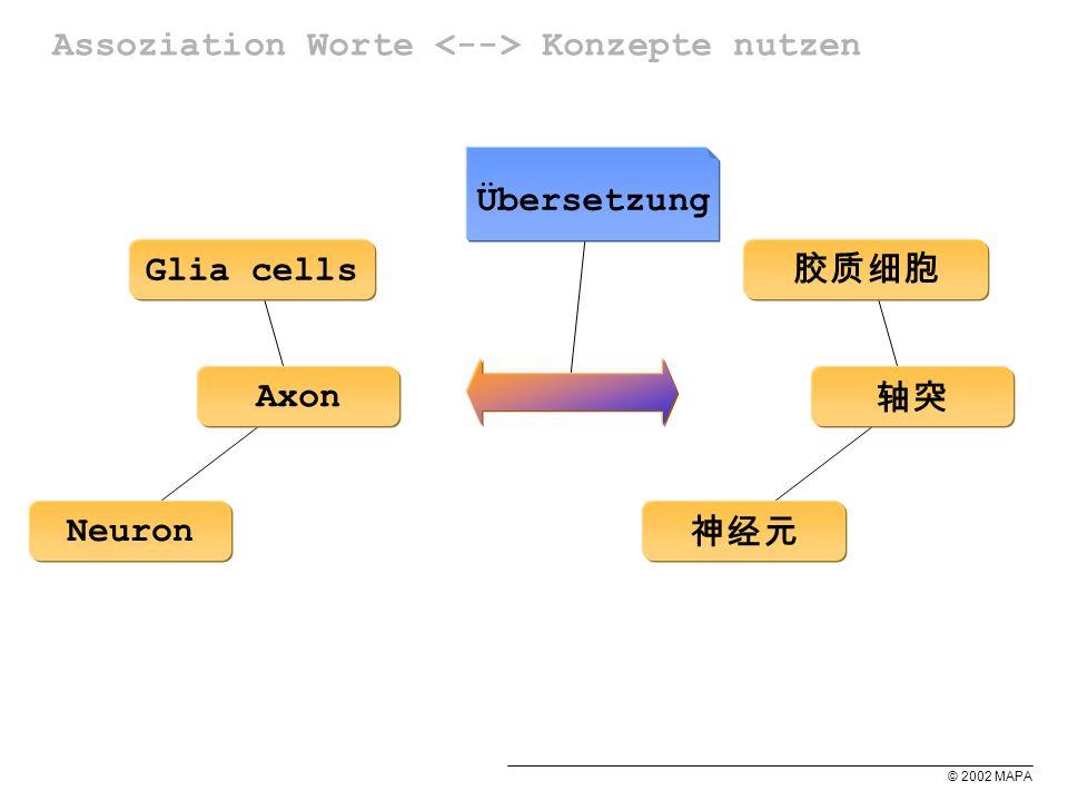 © 2002 MAPA Assoziation Worte Konzepte nutzen Neuron Axon Glia cells Übersetzung
