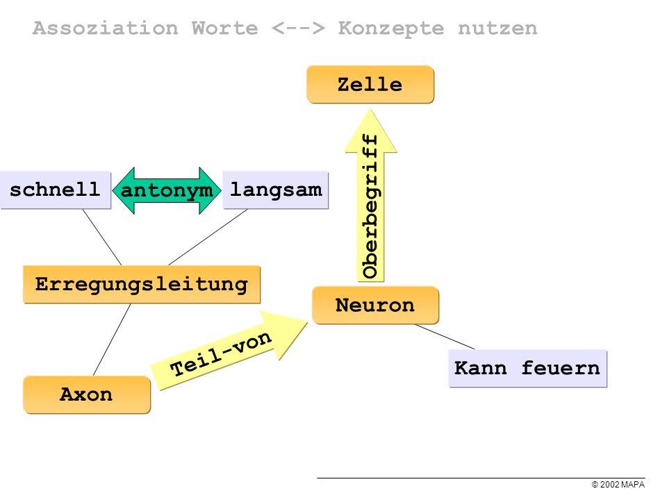 © 2002 MAPA Assoziation Worte Konzepte nutzen Neuron Kann feuern Erregungsleitung Teil-von Axon Zelle Oberbegriff langsamschnell antonym