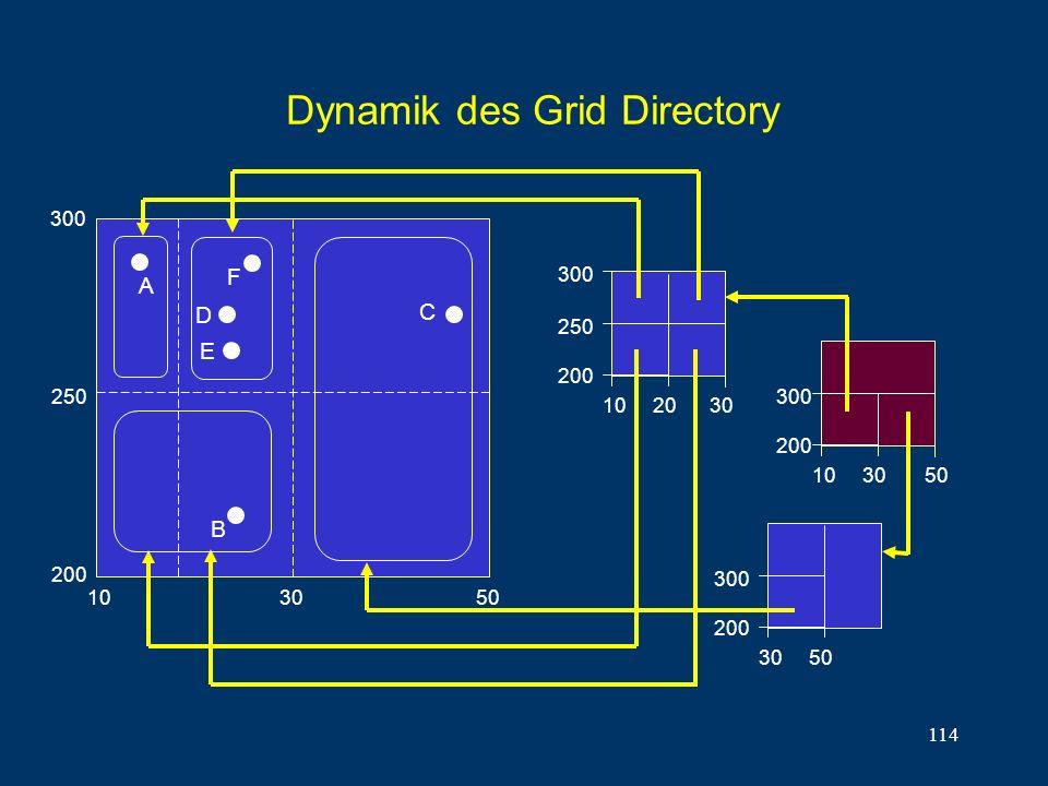114 Dynamik des Grid Directory 10 20 30 250 200 A B C 10 30 50 300 200 D 10 30 50 300 200 E 250 300 F 30 50 300 200