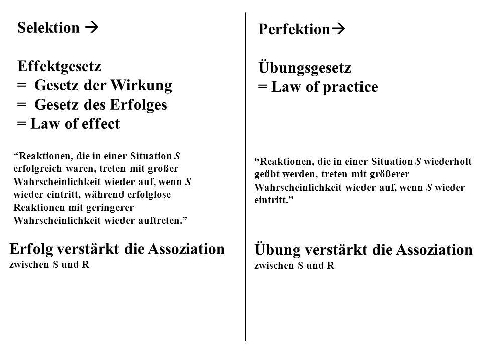 Selektion Effektgesetz = Gesetz der Wirkung = Gesetz des Erfolges = Law of effect Reaktionen, die in einer Situation S erfolgreich waren, treten mit g