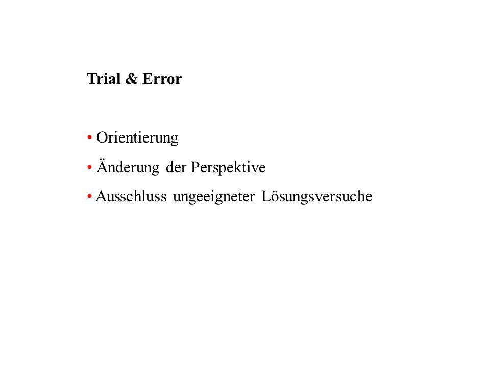 Trial & Error Orientierung Änderung der Perspektive Ausschluss ungeeigneter Lösungsversuche