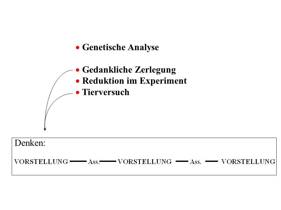 Mayzner & Tresselt (1958) Lösungszeiten in sec häufig selten UM- gering 8,5 13,010,75 STEL- LUNG stark 25,0 151,088,0 16,75 82,0