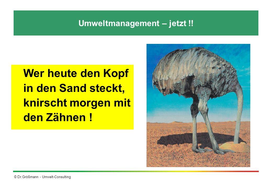 © Dr.Größmann - Umwelt-Consulting Umweltmanagement – jetzt !! Wer heute den Kopf in den Sand steckt, knirscht morgen mit den Zähnen !