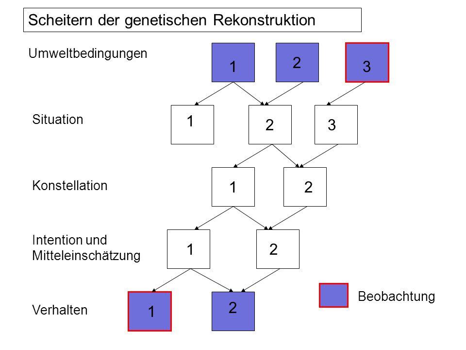Umweltbedingungen Situation Konstellation Intention und Mitteleinschätzung Verhalten 1 1 2 1 1 1 2 2 2 2 3 3 Scheitern der genetischen Rekonstruktion