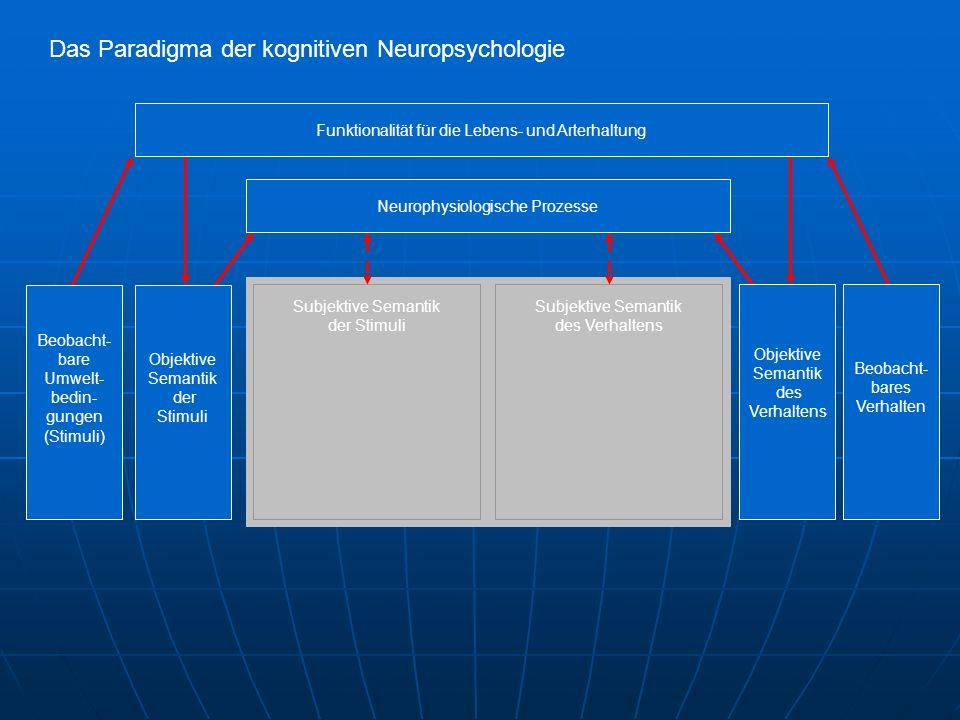 Das Paradigma der kognitiven Neuropsychologie Subjektive Semantik der Stimuli Subjektive Semantik des Verhaltens Objektive Semantik der Stimuli Beobacht- bare Umwelt- bedin- gungen (Stimuli) Beobacht- bares Verhalten Objektive Semantik des Verhaltens Funktionalität für die Lebens- und Arterhaltung Neurophysiologische Prozesse