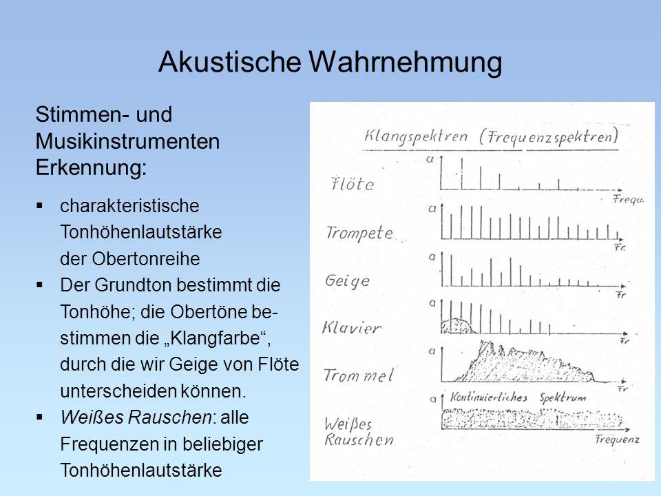 Akustische Wahrnehmung Stimmen- und Musikinstrumenten Erkennung: Akustik 14 charakteristische Tonhöhenlautstärke der Obertonreihe Der Grundton bestimm