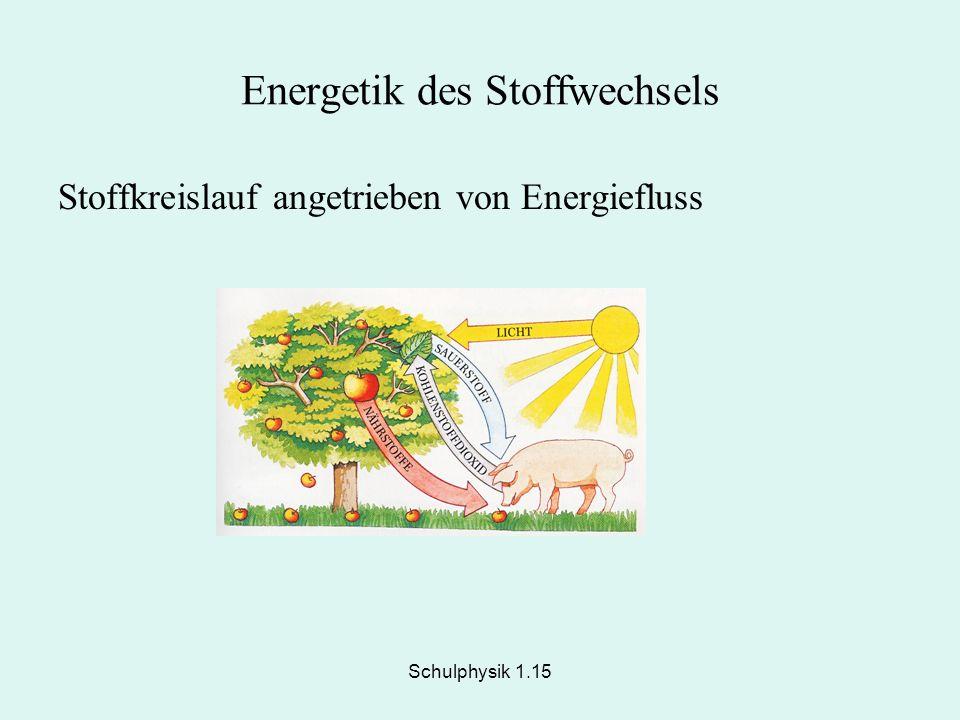 Schulphysik 1.15 Energetik des Stoffwechsels Stoffkreislauf angetrieben von Energiefluss