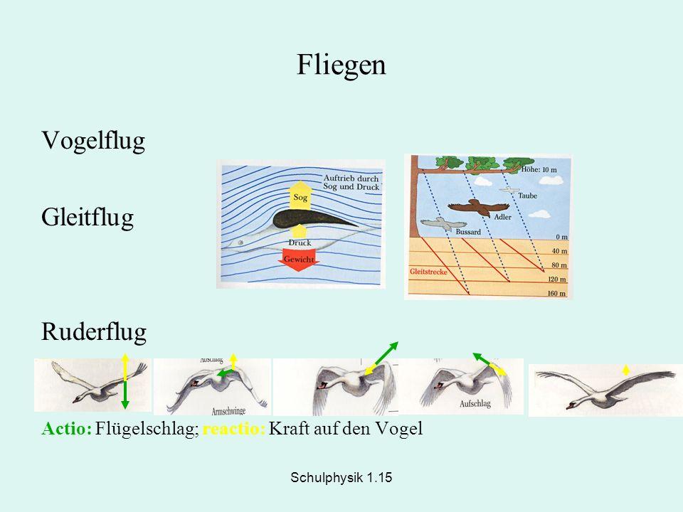 Schulphysik 1.15 Fliegen Vogelflug Gleitflug Ruderflug Actio: Flügelschlag; reactio: Kraft auf den Vogel