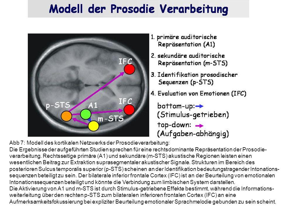 Abb 7: Modell des kortikalen Netzwerks der Prosodieverarbeitung: Die Ergebnisse der aufgeführten Studien sprechen für eine rechtsdominante Repräsentat