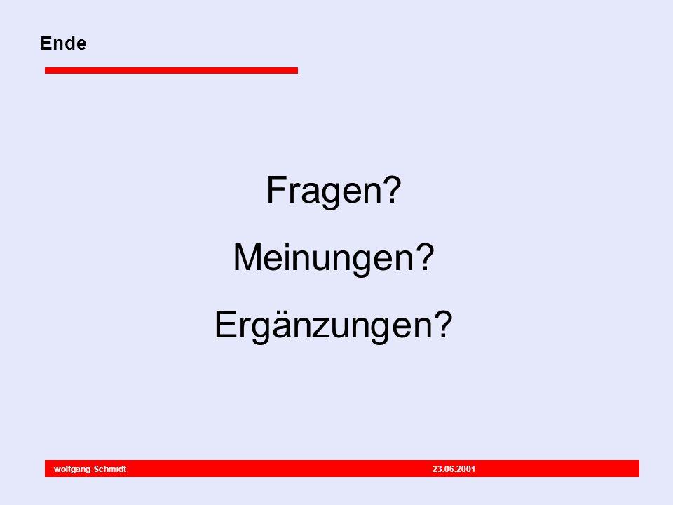 wolfgang Schmidt 23.06.2001 Fragen Meinungen Ergänzungen Ende