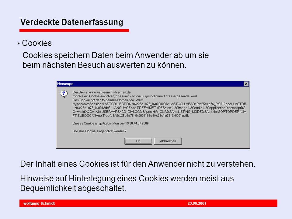 wolfgang Schmidt 23.06.2001 Verdeckte Datenerfassung Cookies Der Inhalt eines Cookies ist für den Anwender nicht zu verstehen.