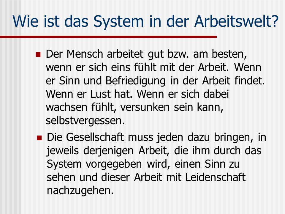 Wie ist das System in der Arbeitswelt? Die Gesellschaft muss jeden dazu bringen, in jeweils derjenigen Arbeit, die ihm durch das System vorgegeben wir