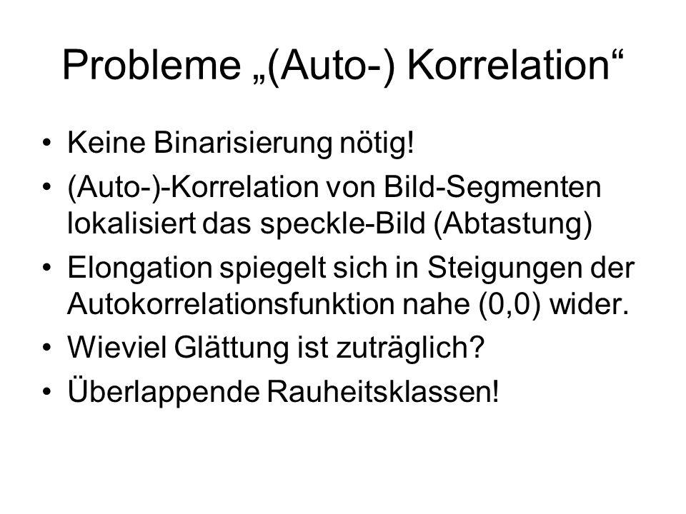 Probleme (Auto-) Korrelation Keine Binarisierung nötig! (Auto-)-Korrelation von Bild-Segmenten lokalisiert das speckle-Bild (Abtastung) Elongation spi