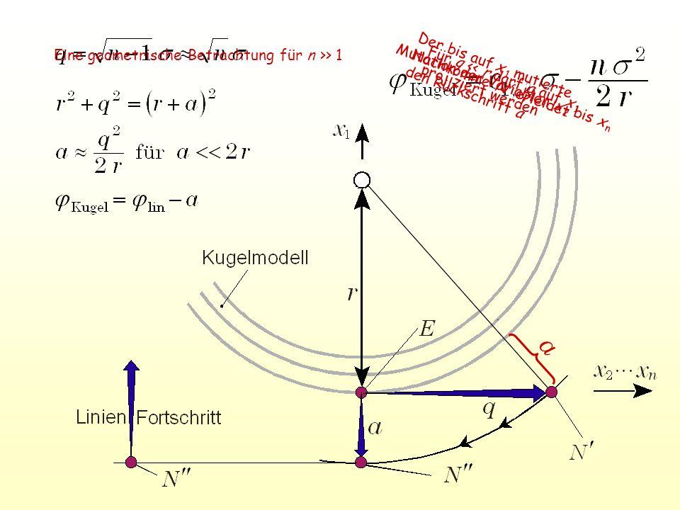 a Für q << r darf a auf x 1 projiziert werden Mutation der Variablen x 2 bis x n Der bis auf x 1 mutierte Nachkomme N erleidet den Rückschritt a Eine geometrische Betrachtung für n >> 1