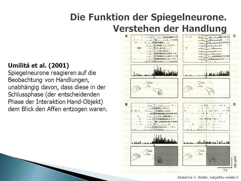 Ekaterina V. Weder, katja@ev-weder.li Umilità et al. (2001) Spiegelneurone reagieren auf die Beobachtung von Handlungen, unabhängig davon, dass diese
