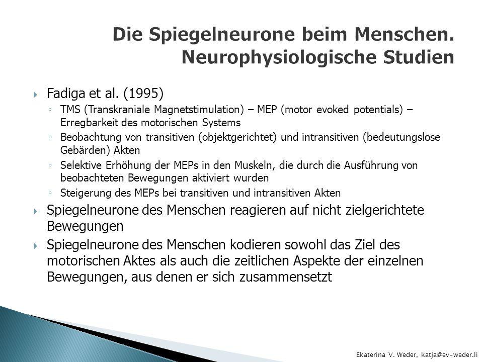 Fadiga et al. (1995) TMS (Transkraniale Magnetstimulation) – MEP (motor evoked potentials) – Erregbarkeit des motorischen Systems Beobachtung von tran