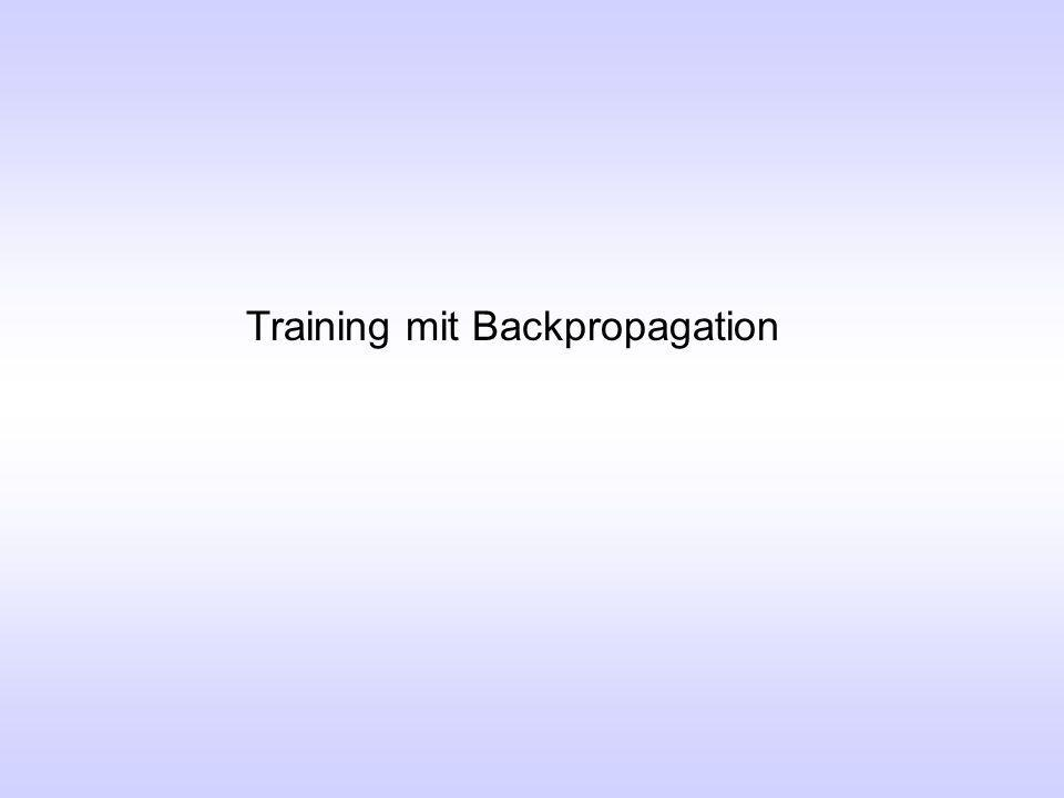 Training mit Backpropagation