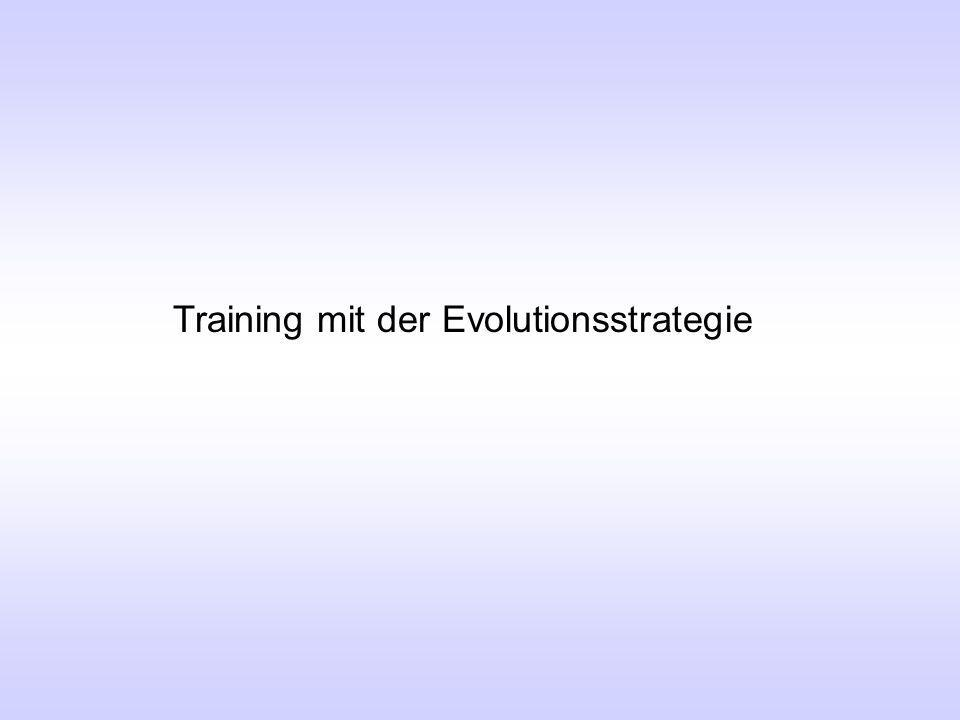 Training mit der Evolutionsstrategie