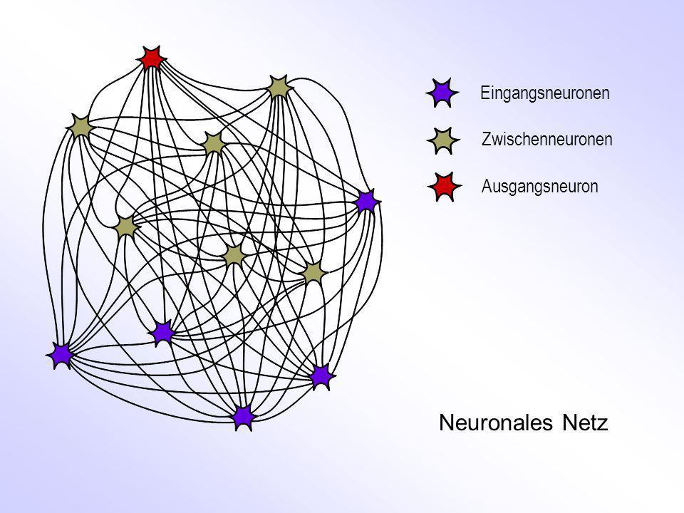 Frank R OSENBLATT s Perceptron Neuronales Netz 1.
