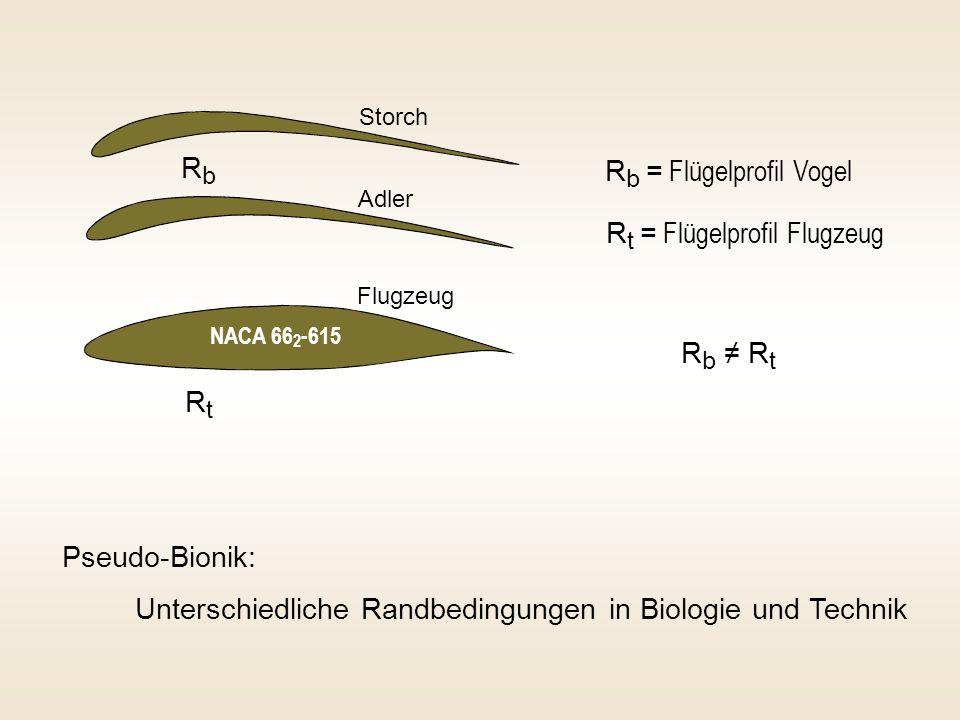 R b = Flügelprofil Vogel R t = Flügelprofil Flugzeug Pseudo-Bionik: Unterschiedliche Randbedingungen in Biologie und Technik RbRb RtRt R b R t NACA 66 2 -615 Storch Adler Flugzeug