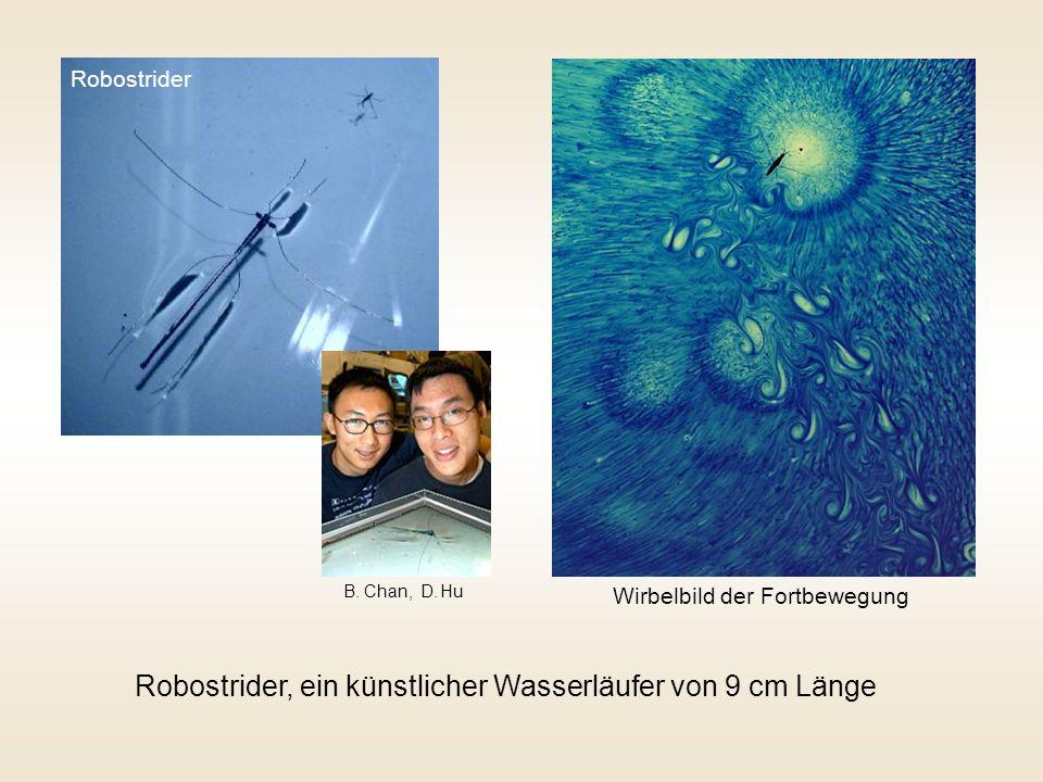Robostrider Robostrider, ein künstlicher Wasserläufer von 9 cm Länge Wirbelbild der Fortbewegung B.