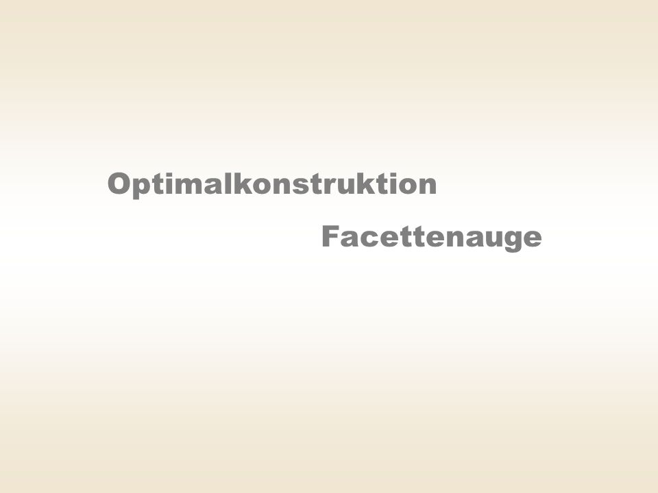 Optimalkonstruktion Facettenauge
