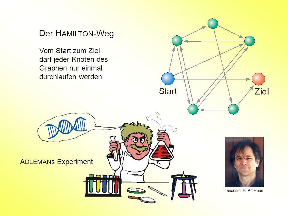 Der H AMILTON -Weg Vom Start zum Ziel darf jeder Knoten des Graphen nur einmal durchlaufen werden. A DLEMAN s Experiment Lenonard M. Adleman
