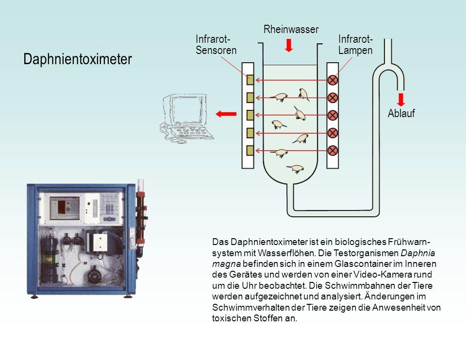 Das Daphnientoximeter ist ein biologisches Frühwarn- system mit Wasserflöhen. Die Testorganismen Daphnia magna befinden sich in einem Glascontainer im