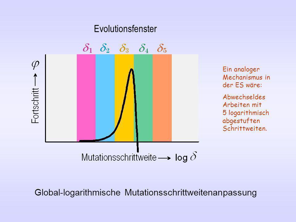 Global-logarithmische Mutationsschrittweitenanpassung Evolutionsfenster Ein analoger Mechanismus in der ES wäre: Abwechseldes Arbeiten mit 5 logarithm