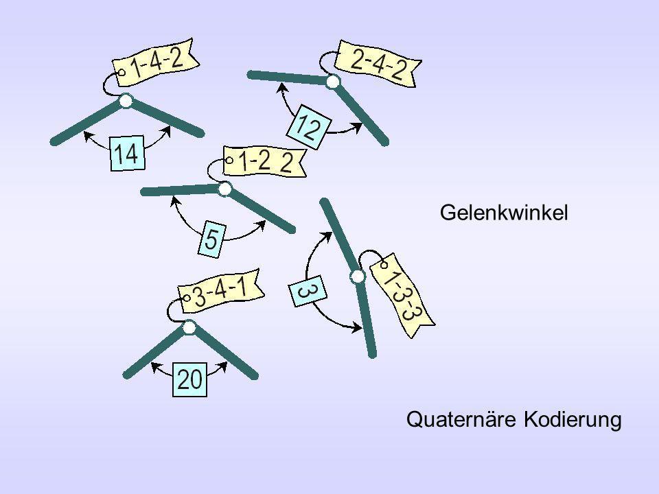 Von der quaternären Kodierung in der Biologie mit den vier Symbolen T, C, A, G T T T Phenylalanin T T C Phenylalanin T T A Leucin G G G Glycin zur binären Kodierung der genetische Algorithmen mit den Symbolen 0, 1 0 0 0 0 0 0 - Grad-Winkel 0 0 0 0 1 1 - Grad-Winkel 0 0 0 1 0 2 - Grad-Winkel 1 1 1 1 31 - Grad-Winkel