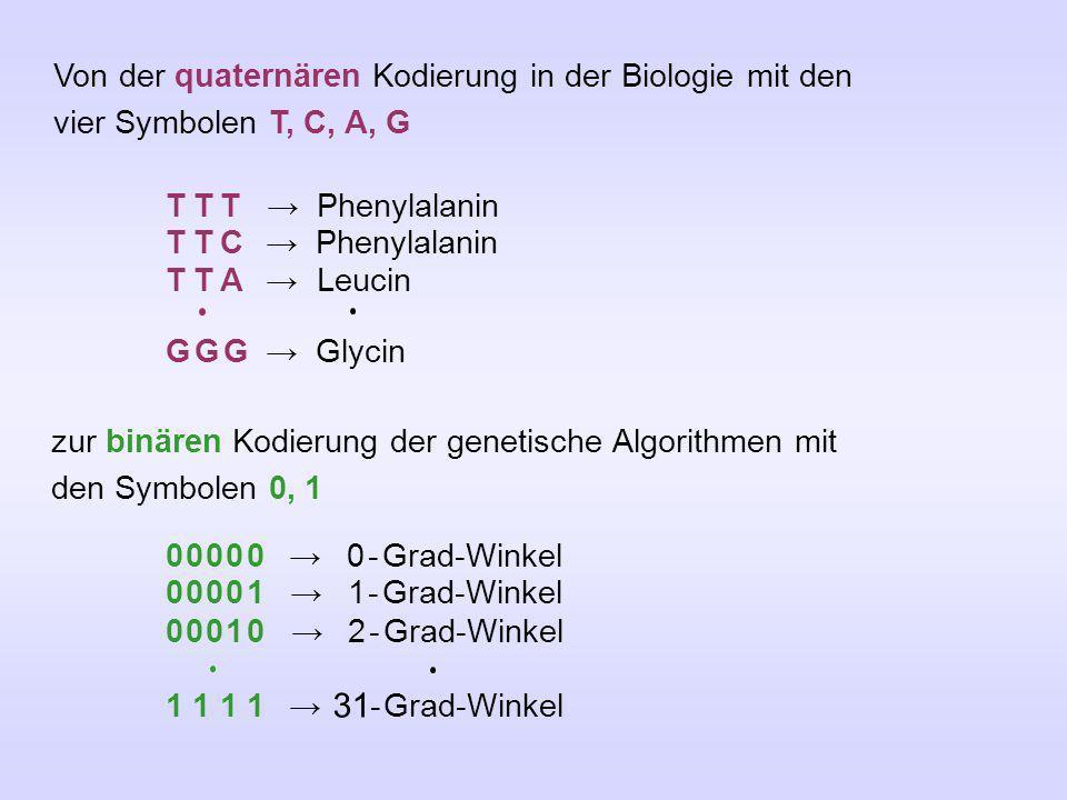 Von der quaternären Kodierung in der Biologie mit den vier Symbolen T, C, A, G T T T Phenylalanin T T C Phenylalanin T T A Leucin G G G Glycin zur bin