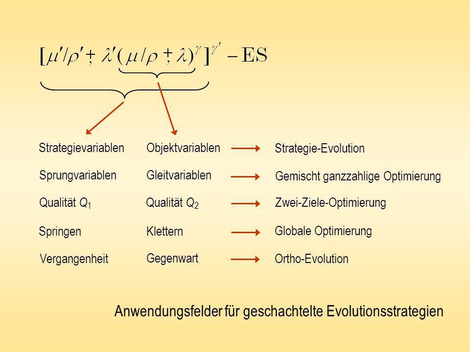 Strategievariablen Objektvariablen SprungvariablenGleitvariablen Qualität Q 1 Qualität Q 2 Springen Klettern Vergangenheit Gegenwart Strategie-Evoluti