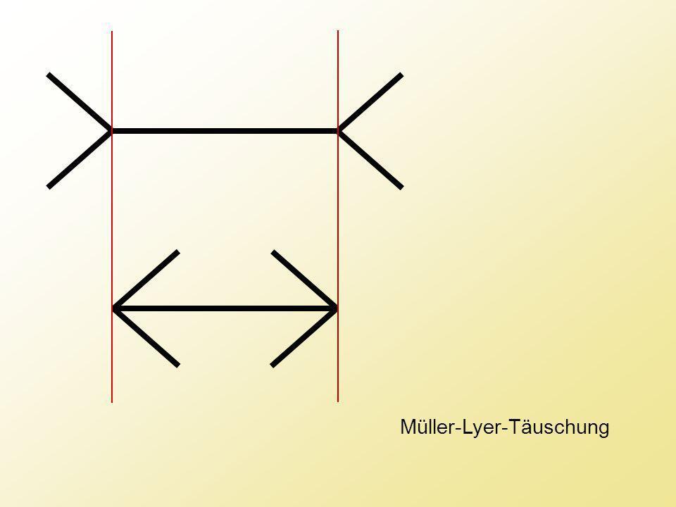 Müller-Lyer-Täuschung