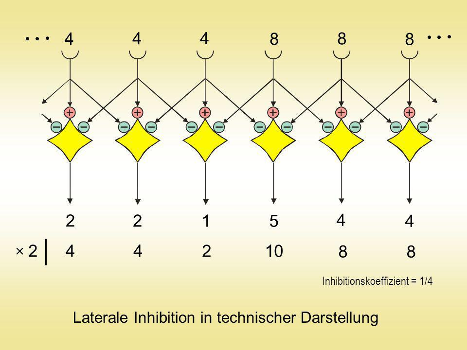 Mathematische Interpretation des Fensterkreuzoperators 1 3 0 4 2 Dieser Operator ist das digitale Analogon zum Laplace-Operator: diskretisiert f1f1 f0f0 f2f2 h h f3f3 f0f0 f4f4 x, y