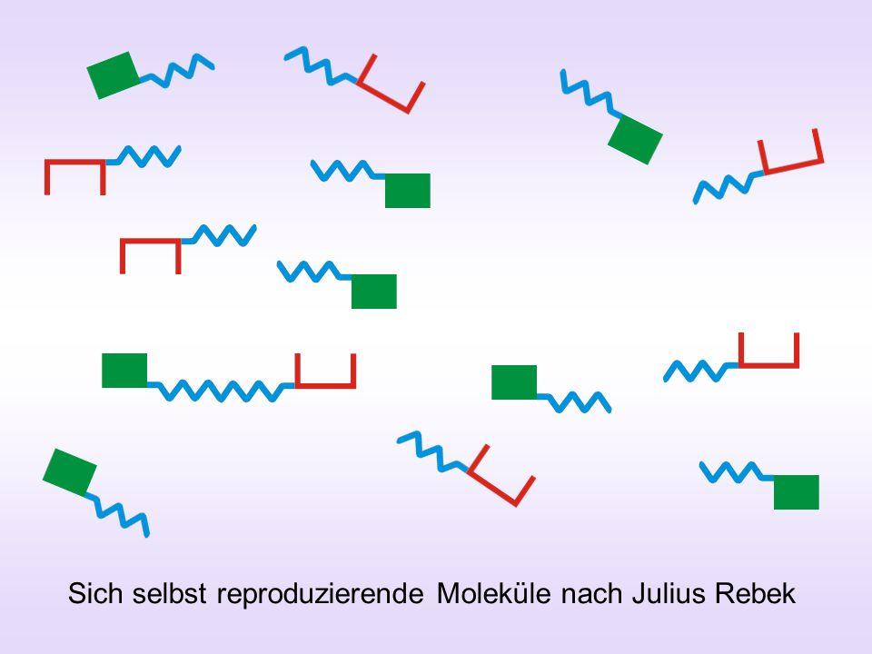 Sich selbst reproduzierende Moleküle nach Julius Rebek