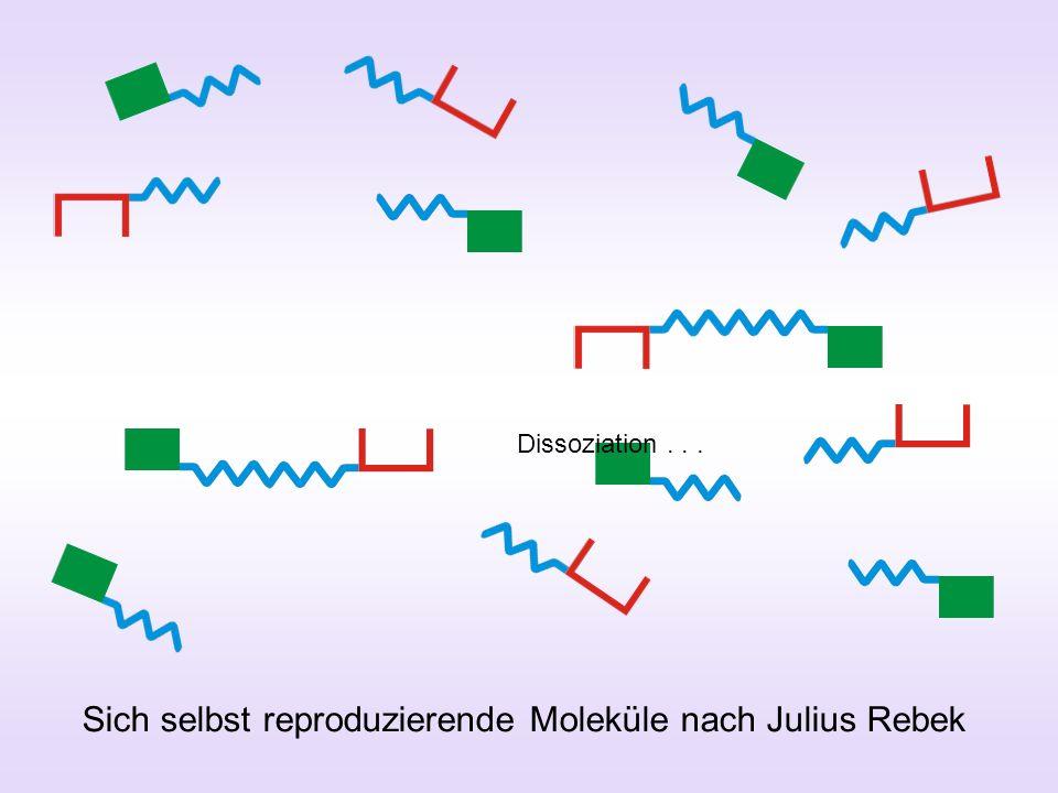 Sich selbst reproduzierende Moleküle nach Julius Rebek Dissoziation...