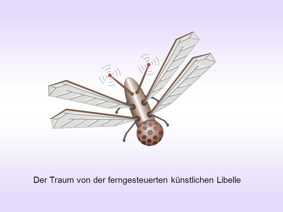 Der Traum von der ferngesteuerten künstlichen Libelle