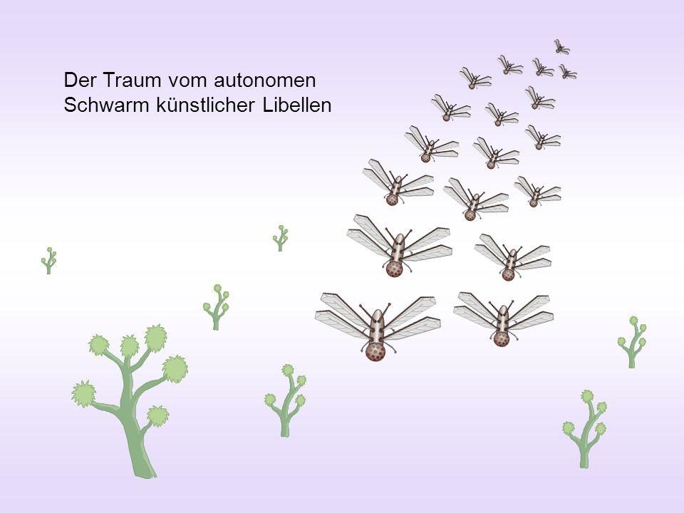 Der Traum vom autonomen Schwarm künstlicher Libellen