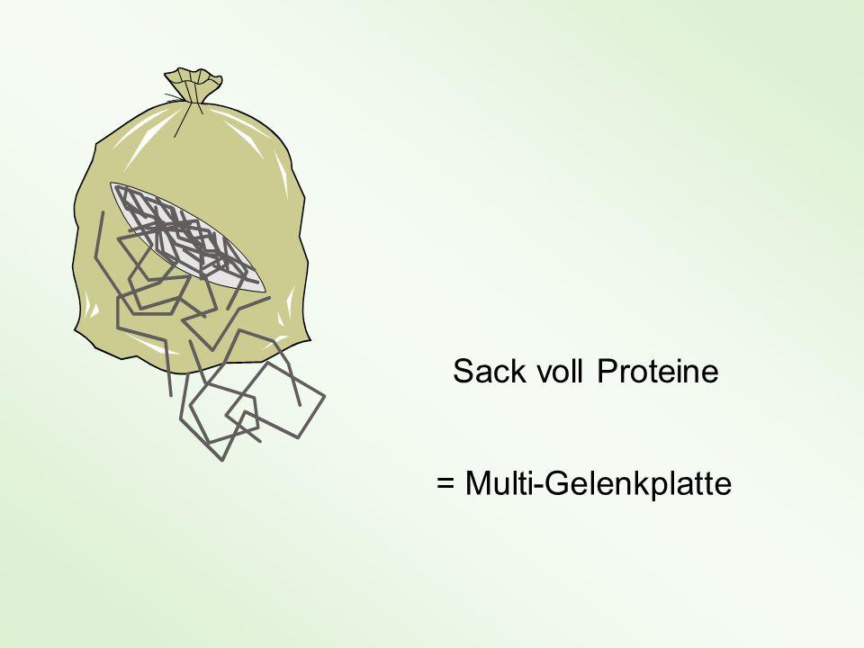 Sack voll Proteine = Multi-Gelenkplatte