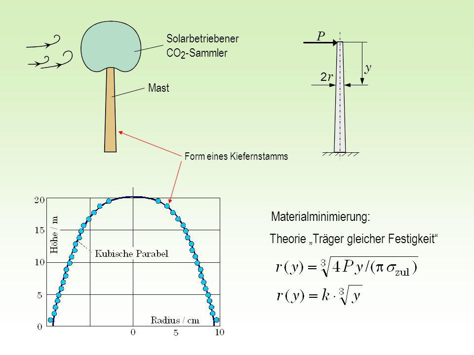 2 r2 r y P Theorie Träger gleicher Festigkeit Form eines Kiefernstamms Solarbetriebener CO 2 -Sammler Mast Materialminimierung: